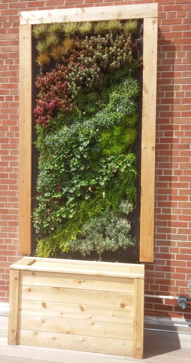 Howlett Hall Green Wall